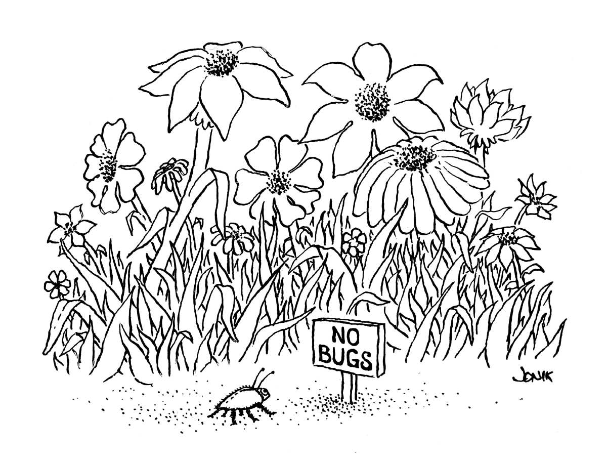 Illustration of plants and a bug with a little sign reading 'no bugs'